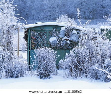Plants and house covered with snow - stock photo
