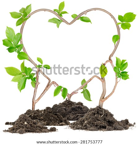 Plants growing from soil heaps forming heart with white space - stock photo