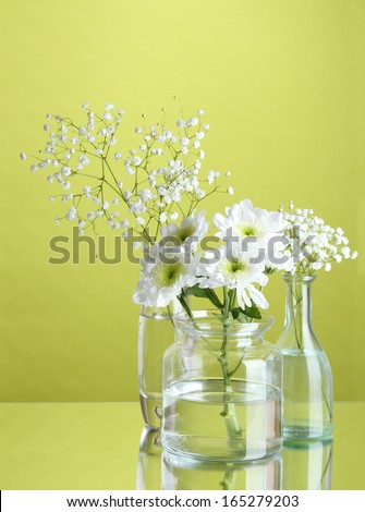 Plants in various glass containers on green background - stock photo