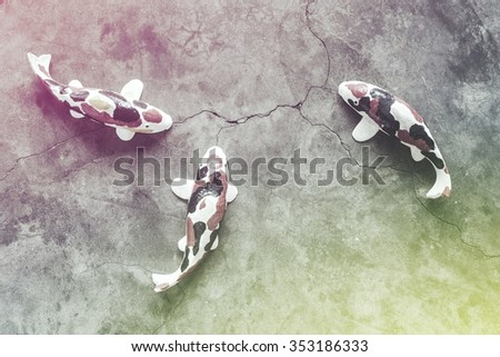Plaster koi fish arranged on a cement cracks. Vintage style - stock photo