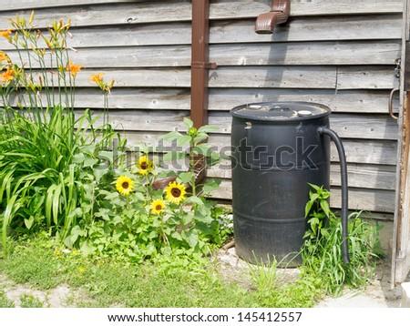 Plastic barrel for recycling rainwater - stock photo