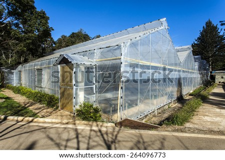 Plastic covered horticulture greenhouse plantations - stock photo