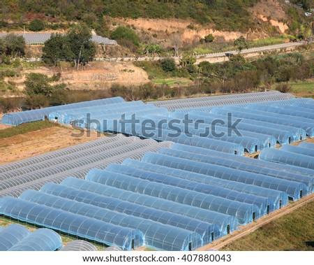 Plastic greenhouse for farming  - stock photo