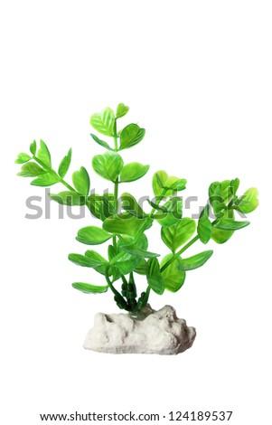 Plastic Seaweed on White Background - stock photo