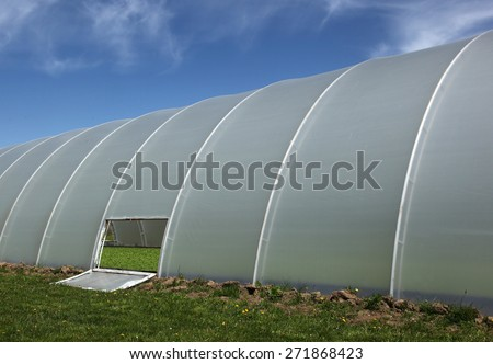 Plastic tunnel greenhouse with young plants inside - stock photo