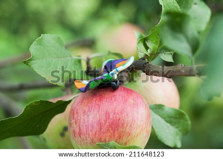 Plasticine world - little homemade multicolored butterfly is sitting on the apple, selective focus on head - stock photo
