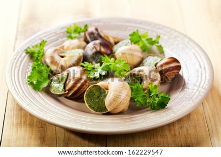plate of escargots on wooden table - stock photo