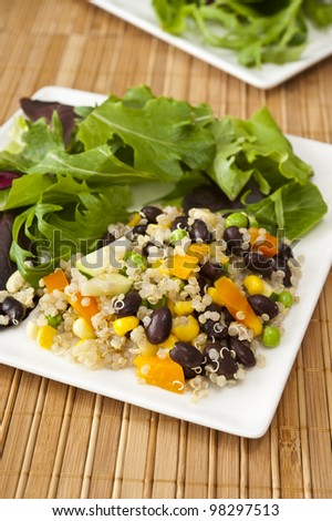 Plate of quinoa vegetable salad and field greens - stock photo