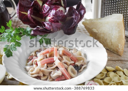 Plate with orecchiette pasta prepared with speck, red chicory and parmesan cheese by a typical Italian recipe. - stock photo