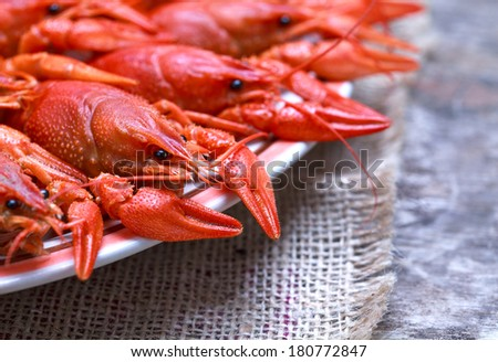 Plate with red boiled crawfish on a wooden table in rustic style, close-up, selective focus on one crawfish, place for text  - stock photo