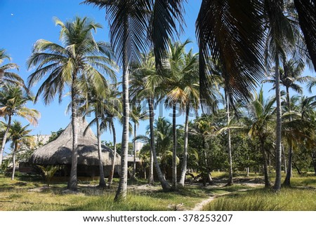 Playa Blanca on the island of Baru. Cartagena de Indias. Colombia - stock photo