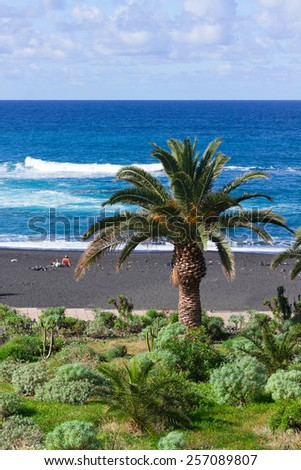 playa Jardin (beach garden), Puerto de la Cruz, Tenerife island, Spain - stock photo