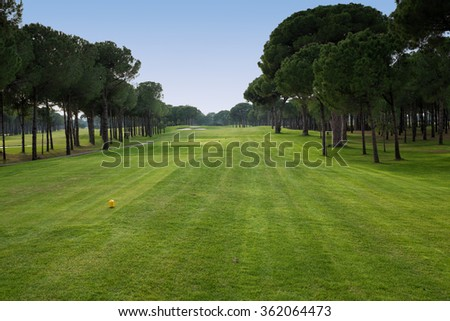 playing golf on a golf course - stock photo