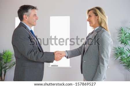 Pleased mature businessman shaking the hand on a content blonde businesswoman at office - stock photo