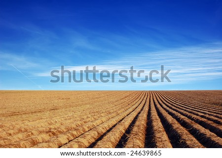 ploughed agricultural field - stock photo