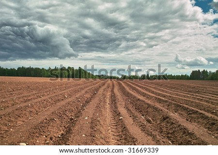 Ploughed field. Fresh tillage bordered with forest under cloudy sky - stock photo