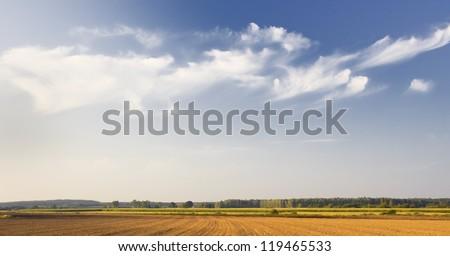 plowed field at golden light. panorama - stock photo
