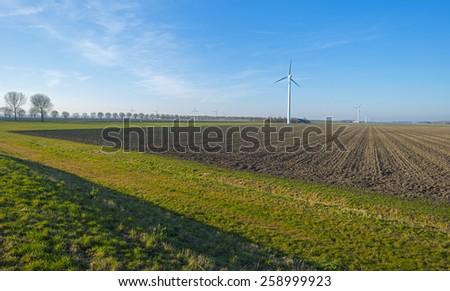 Plowed field under a blue sky in winter - stock photo