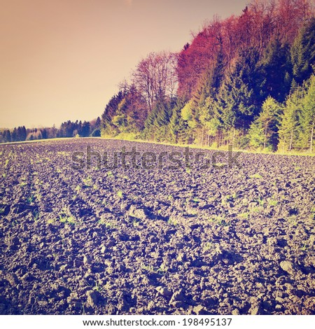 Plowed Fields near the Forest in Swiss Alps, Sunset, Retro Effect - stock photo