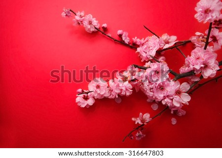 Plum Flowers Blossom on red background good for chinese new year use - stock photo