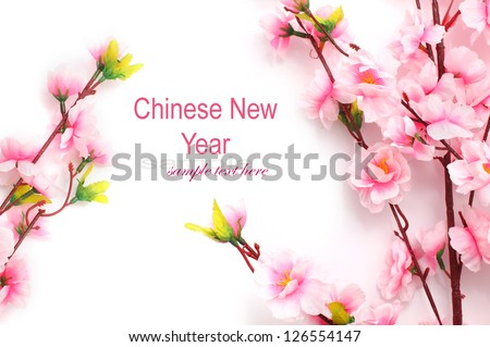 Plum flower stock photos images pictures shutterstock - Flowers for chinese new year ...