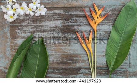plumeria and bird of paradise flower with a wood vintage background, flat lay image,copy space - stock photo