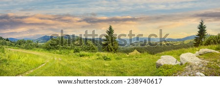 pnoramic collage  landscape. boulders on the meadow with path on the hillside and two pine trees on top of mountain range at sunrise - stock photo