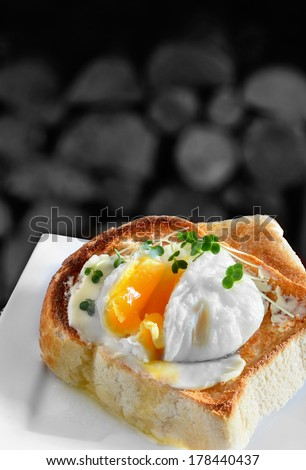Poached egg on toast. A traditional English breakfast or snack. Image from my Pub Food Set. Copy space. - stock photo