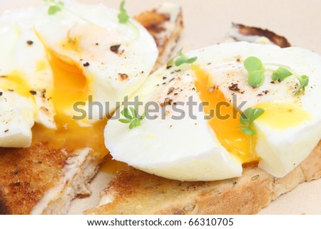 Poached eggs on toast. - stock photo