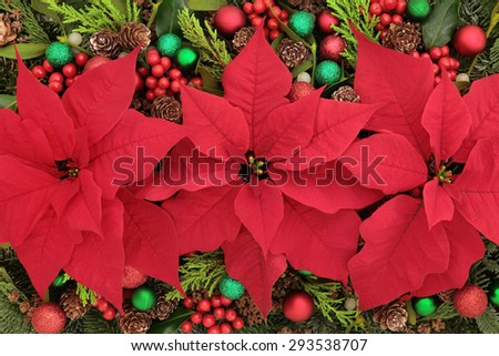 Poinsettia flower background with bauble decorations, holly, mistletoe and winter greenery. - stock photo