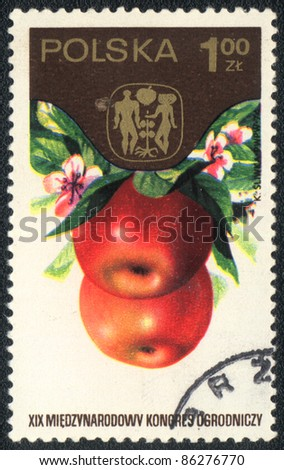 "POLAND - CIRCA 1974: A stamp printed in POLAND  shows  a Apple, series ""XIX International congress of truck farming"", circa 1974 - stock photo"