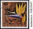 POLAND - CIRCA 1968: A stamp printed in Poland shows a flower Strelitzia reginae, circa 1968 - stock photo
