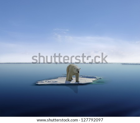 Polar bear on an ice floe in antarctica - stock photo