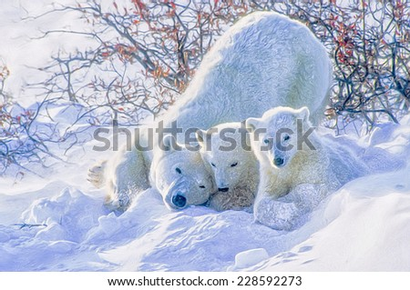 Polar bear with her cubs in blowing snow - stock photo