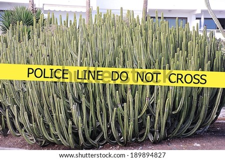 Police line do not cross sign tape on cactus and building background - stock photo