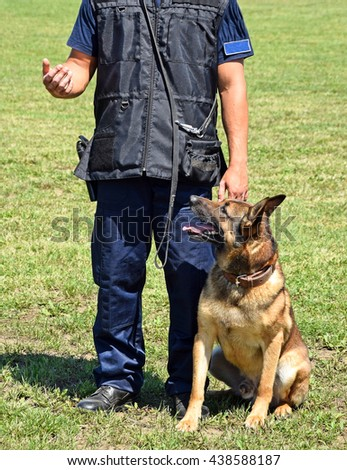 Police man with his sniff dog - stock photo