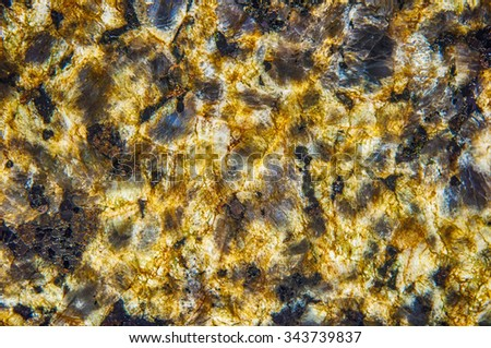 Polished gold, dark and beige cream marble as background - stock photo