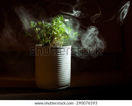 polluting and tree concept still life - stock photo