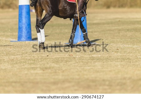 Polo Horse Mallet Boot Goals Polo equestrian rider horse pony goals mallet  game action - stock photo