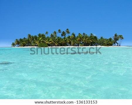 polynesia  - stock photo