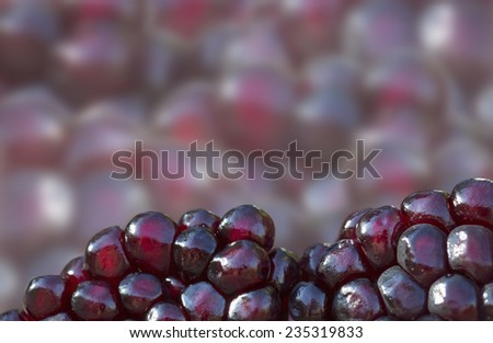 Pomegranate aril (seed) background with isolated focused seeds forming a frame around blurred background - stock photo