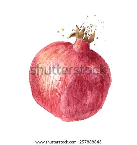 Pomegranate fruit, watercolor illustration - stock photo