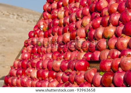 Pomegranates on display along the road in Jordan - stock photo
