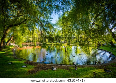 Pond at Centre Island, in Toronto, Ontario. - stock photo