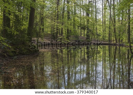 Pond at the casino park in spring, Georgsmarienhuette, Osnabrueck country, Lower Saxony, Germany - stock photo