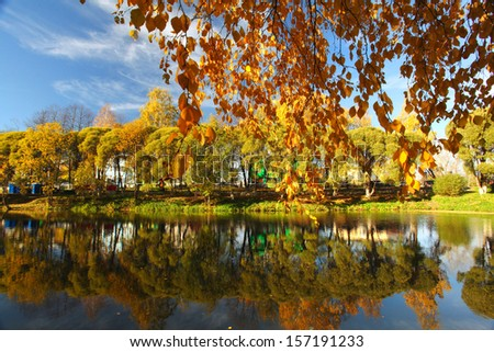 Pond in autumn, yellow leaves, reflection - stock photo