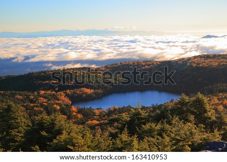 Pond in the forest, Yachiho plateau Shirakoma pond, Nagano, Japan - stock photo