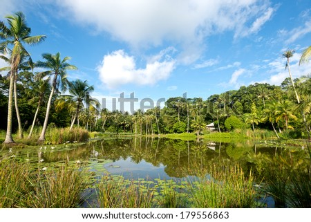 Pond on Pulau Ubn, Singapore - stock photo