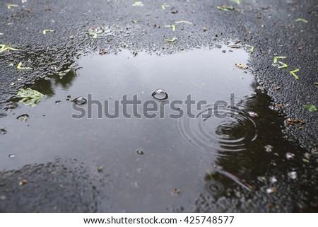 Pool on black asphalt. It is raining. - stock photo