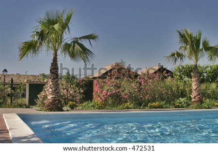 Poolside villa in Sicily with palm trees and a clear blue sky - stock photo